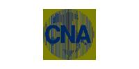 cna-siliciovisual